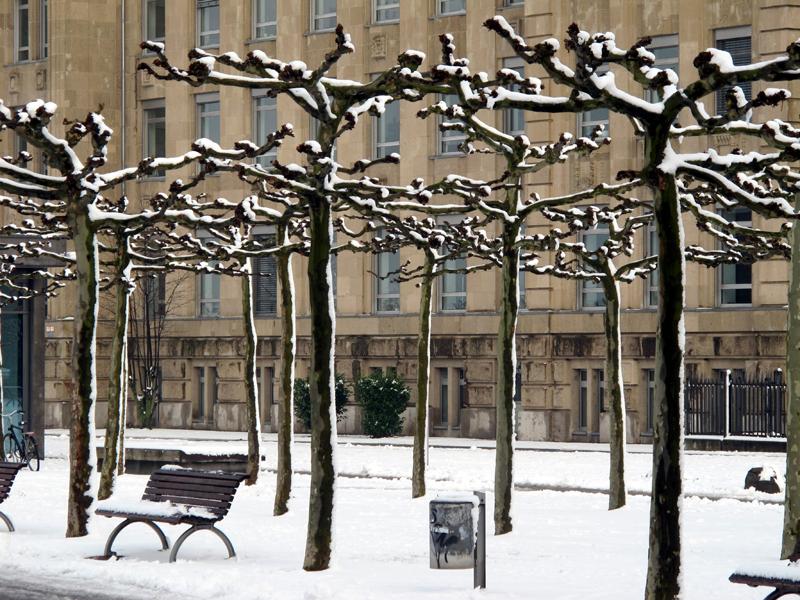 Snow in Düsseldorf next to the Rhine